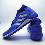 Обувь для футбола сорокoножки Adidas Predator Tango 19.3 TF, фото 4