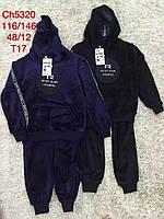 Велюровый костюм на меху для мальчиков S&D 116-146 р.р.