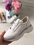 Стильные женские белые кожаные кроссовки, фото 5