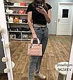 Сумка в стиле Диор Леди серебряная фурнитура (0287) Розовый, фото 2