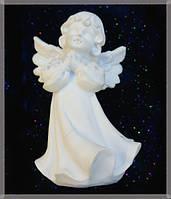 9260333 Ангел в рубашке №2