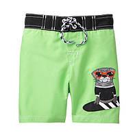 Пляжные шорты для купания Gymboree для мальчика