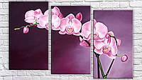 "Модульная картина на холсте ""Орхидея живопись"""
