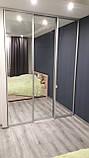 Шкаф-купе встроенный в спальню. Шкафы-купе на заказ Днепр., фото 2