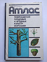 Атлас повреждений плодовых и ягодных культур морозами М.А.Соловьева