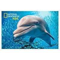 Стерео пазл PRIME 3D Дельфин 150 элементов 5+ (10823)