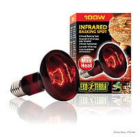 Інфрачервона лампа розжарювання Exo Terra «Infrared Basking Spot» 100 W, E27 (для обігріву) (PT2144)