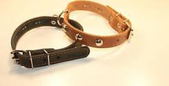 Collar (Коллар) - Кожаный ошейник для собак одинарный с металлическими украшениями 47-62см
