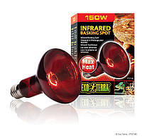 Инфракрасная лампа накаливания Exo Terra «Infrared Basking Spot» 150 W, E27 (для обогрева) (PT2146)
