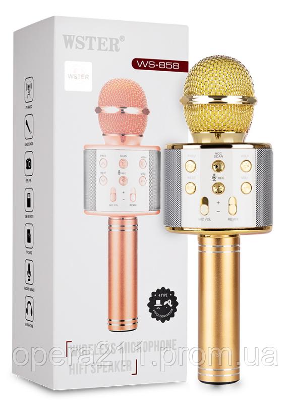 Колонка с функцией Караоке Микрофона WSTER WS-858 (USB, microSD, AUX, фото 1