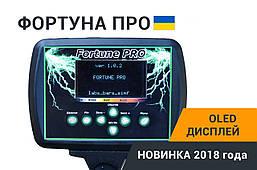 Металлоискатель Металошукач Фортуна ПРО с OLED дисплеем. FM трансмиттер,металлодетектор, фото 3