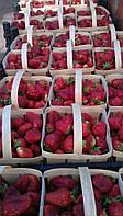 Корзинка для ягод шпоновая