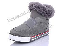 """Ботинки зимние женские """"Wei Wei"""" #Q6 grey. р-р 36-41. Цвет серый. Оптом"""