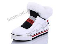 "Ботинки зимние женские ""Wei Wei"" #Q12 white. р-р 36-41. Цвет белый. Оптом"