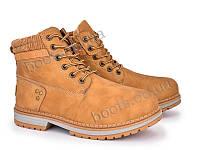 """Ботинки демисезонные женские """"Violeta"""" #20-629 camel. р-р 36-41. Цвет коричневый. Оптом"""
