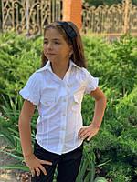 Школьная блузка для девочки №400 (р.128-146) белая, фото 1