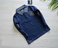 Поло реглан-рубашка Lupilu для мальчика 110\116, фото 1