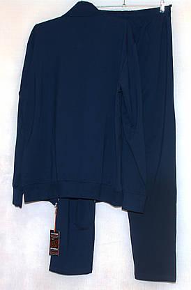 Mужской спортивный костюм синий большого размера Piyera 7417 (3X-4XL), фото 3