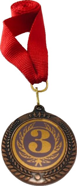 Медаль 2402 бронза