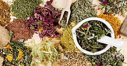 Средства и травы для повышения иммунитета