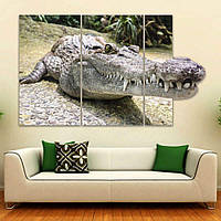 Модульная картина на стену IdeaХ Аллигатор, 90х55 см