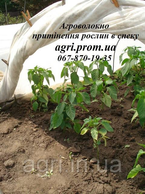 Защита растений от сорняков, заморозков, ожогов, методы и средства защиты растений