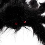 Искусственный паук для Halloween - размер приблизительно 75см, фото 3