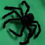 Искусственный паук для Halloween - размер приблизительно 75см, фото 6