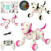 Интерактивная Робот-собака р/у Happy Cow Smart Dog Зумер 777 338 Color Black