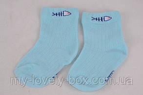 "ОПТОМ.Носочки детские на мальчика ""ХЛОПОК"" 0-12 м. (CA203-2/0-12)   12 пар, фото 2"