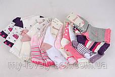 "ОПТОМ.Детские носочки на девочку ""Фенна"" ХЛОПОК (FEC004/12-18) | 12 пар, фото 2"