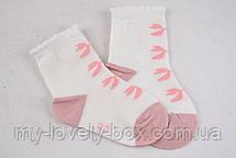 "ОПТОМ.Детские носочки на девочку ""Фенна"" ХЛОПОК (FEC004/12-18) | 12 пар, фото 3"