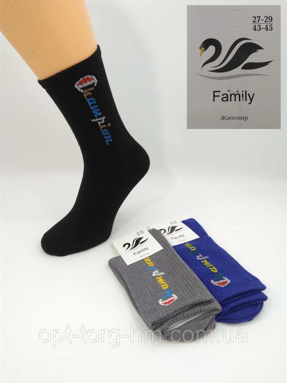 "Мужские носки ""Family"" Campion   25-27 (39-42 обувь)"