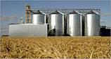 Оборудование для зерновой отрасли