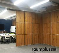 Розсувні двері для переділу кімнати RAUMPLUS (Німеччина)