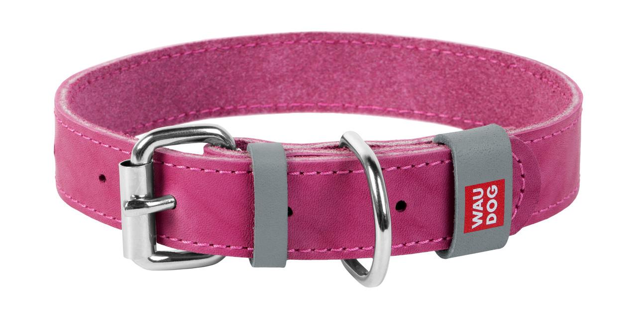 Нашийник шкіра 19-25 см 12 мм Waudog Classic Collar для собак