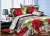 Полуторный комплект постельного белья ранфорс TAG R2210
