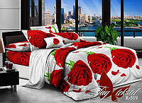 Полуторный комплект постельного белья ранфорс TAG R519