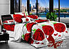 Комплект постельного белья двуспальный хлопок 100% Ранфорс TAG R519