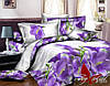 Комплект постельного белья двуспальный хлопок 100% Ранфорс TAG R2033