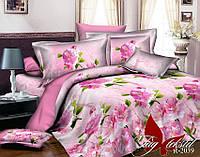 Комплект постельного белья Ранфорс семейный 2 пододеяльника TAG R2039