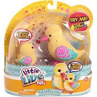 Інтерактивні качечки Little Live Pets Tweet Talking Duck and Baby, Shelly Family