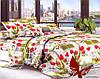 Комплект постельного белья Евро поликоттон TAG XHY51503