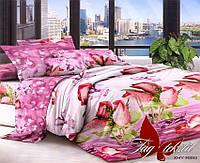 Комплект постельного белья семейный с 2-мя пододеяльниками Поликоттон TAG XHY893