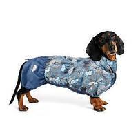 Дождевик для таксы Pet Fashion Патрик XS, длина спины 33-34 см, обхват груди 43-53 см