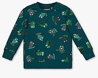 Зеленый утепленный свитшот с принтом для мальчика, C&A, 2060473