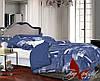 Комплект постельного белья двуспальный хлопок 100% Ранфорс TAG R2311