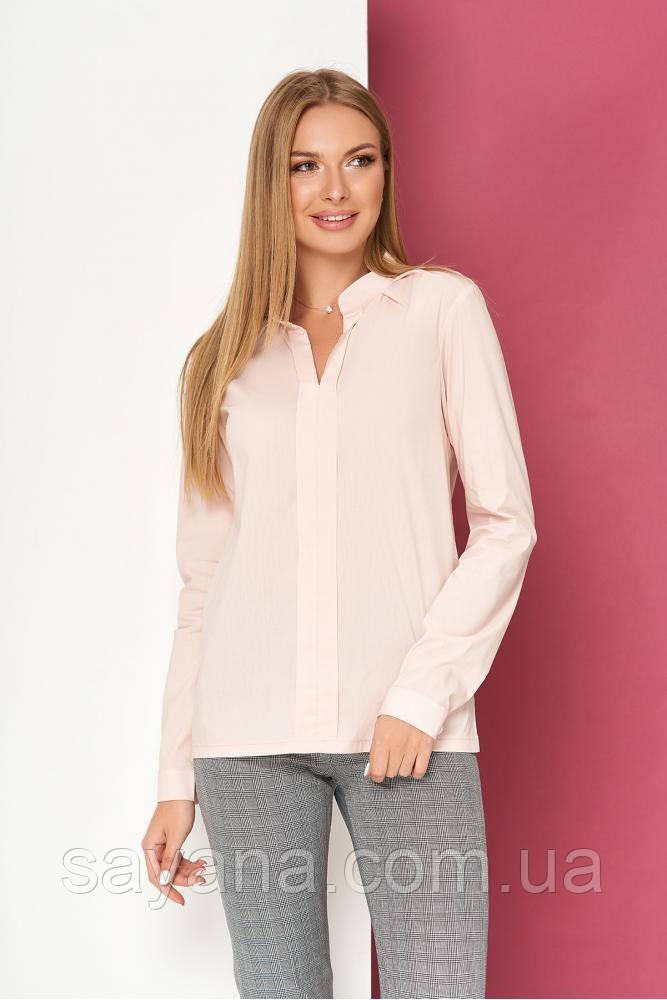 Женская блуза, в расцветках, р-р 48-50. ЛП-7-1-0819(729)
