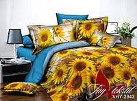 Комплект постельного белья Евро поликоттон TAG XHY2842
