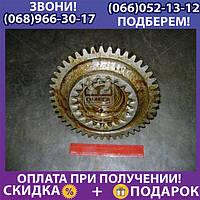 Вал вторичный КПП МТЗ с гайкой (пр-во МТЗ) (арт. 50-1701256)